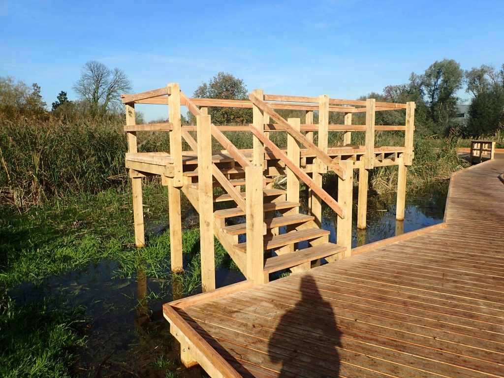 02 morden hall park 250m oak and larch boardwalk nature walk with viewing platforms national trust property