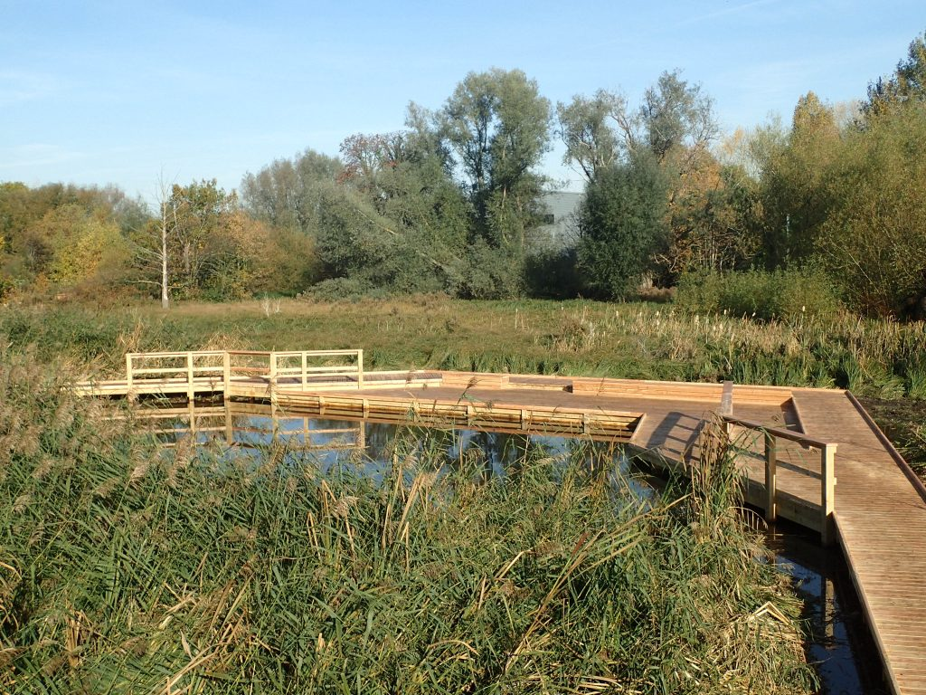 06 morden hall park 250m oak and larch boardwalk nature walk with viewing platforms national trust property
