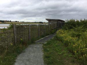 09 abberton reservoir site revisit