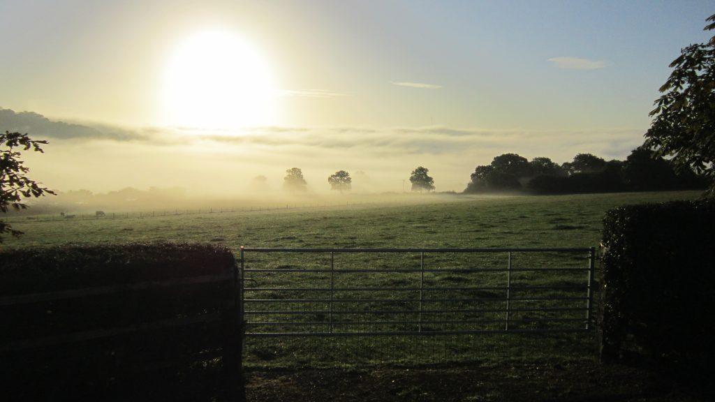 10 dawn bowling green marsh topsham bird hide rspb