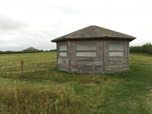 16 abberton reservoir site revisit