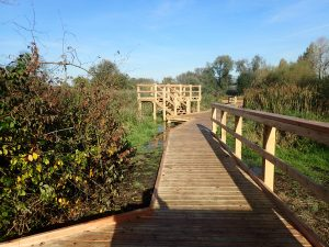 18 morden hall park 250m oak and larch boardwalk nature walk with viewing platforms national trust property