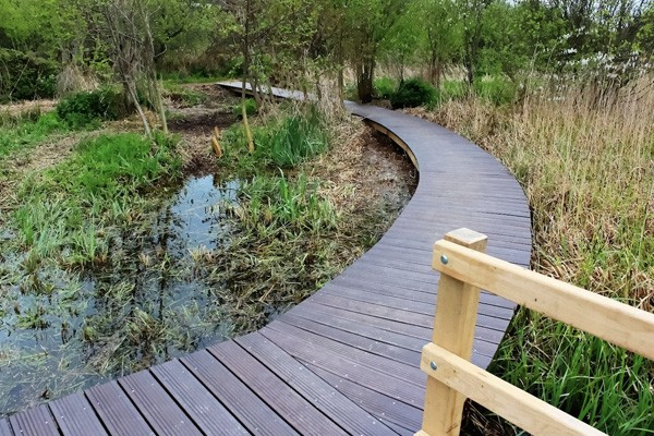 Curved Timber Boardwalk