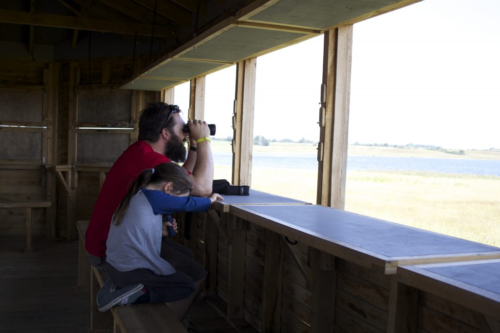 Bird watching island bird hide at abberton reservoir for essex wildlife trust