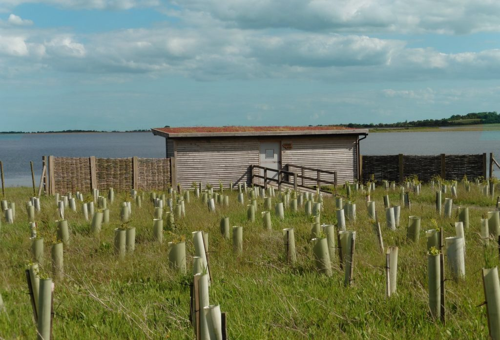 gwens-bird-hide-at-abberton-reservoir-for-essex-wildlife-trust-small