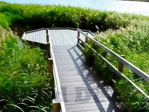 Hexagonal pond dipping platform with walkway by the wild deck company