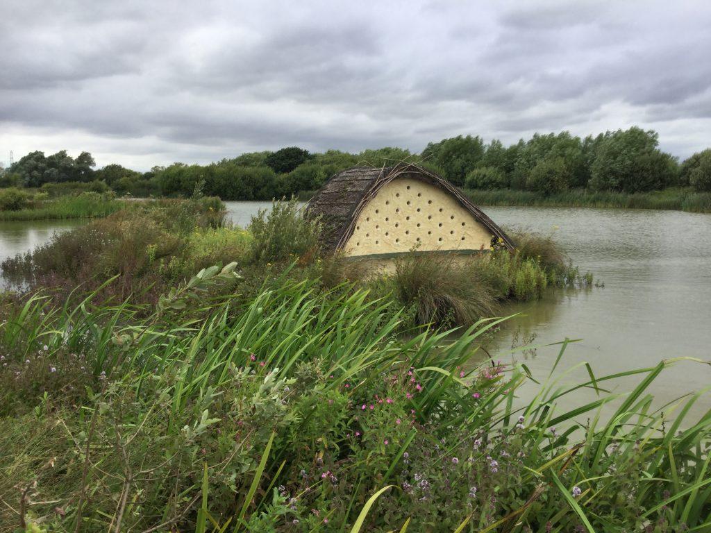House of birds abberton reservoir site revisit