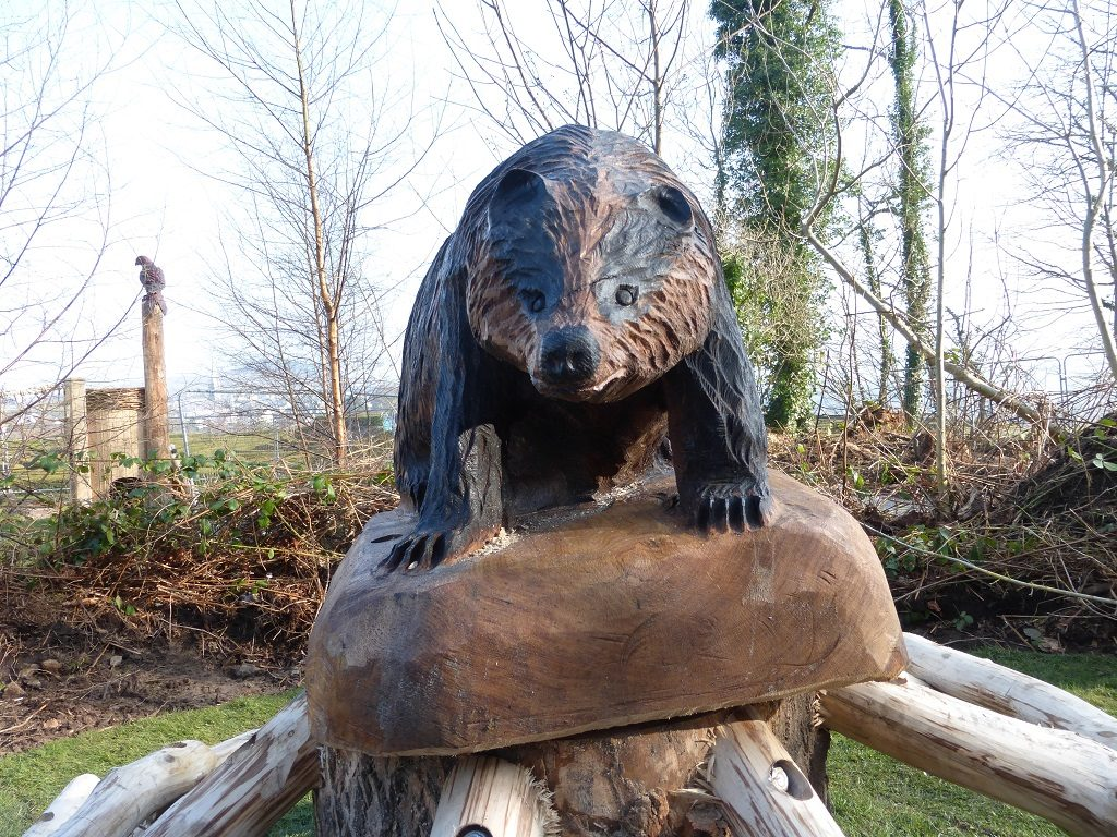 mounted-badger-carving-wooden-sculpture-at-castlewellan-by-the-wild-deck-company