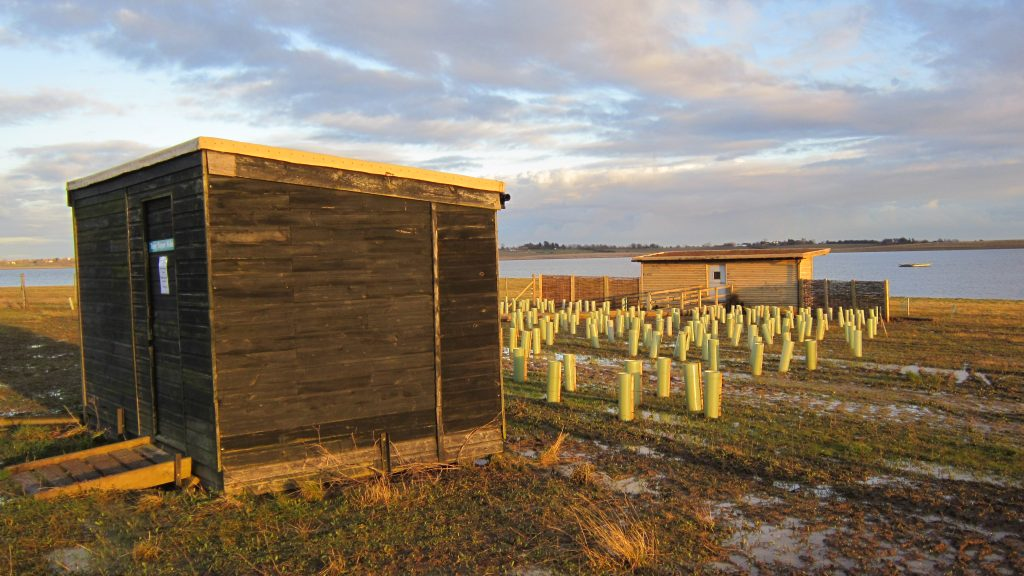 Old and new gwens hide bird hide for essex wildlife trust at abberton reservoir