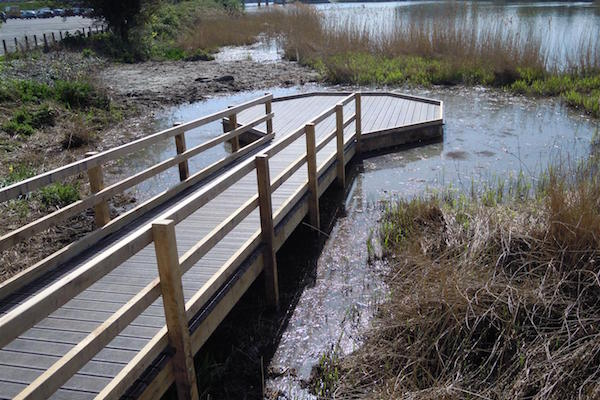 pond-dipping-platform-and-walkway-by-the-wild-deck-company