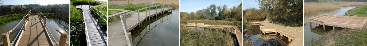 Pond dipping platforms and jetties by the wild deck company 1