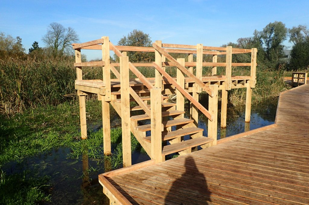 raised-viewing-platform-at-morden-hall-park-by-the-wild-deck-company