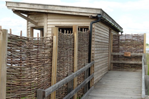 Screen fencing and boardwalk