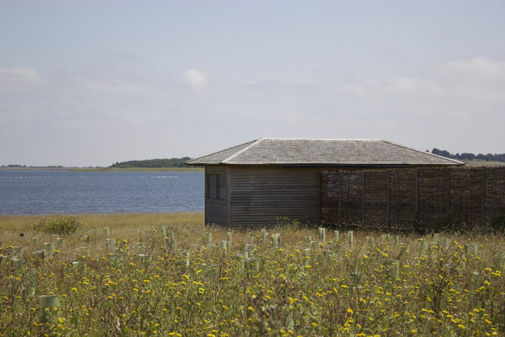Site visit island bird hide at abberton reservoir for essex wildlife trust