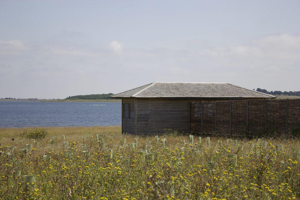 site-visit-island-bird-hide-at-abberton-reservoir-for-essex-wildlife-trust