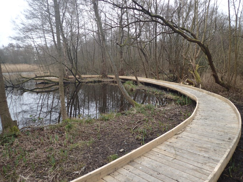 Solihull scout group pond dipping platform and boardwalk by the wild deck company