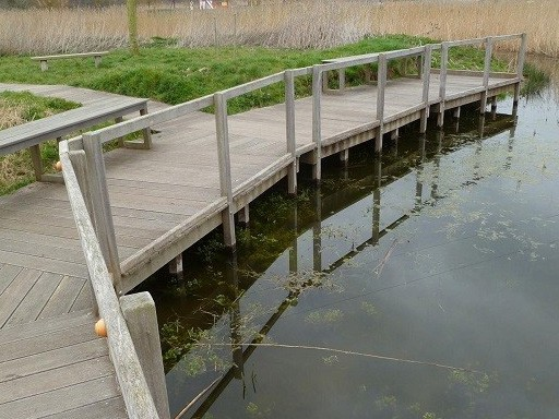 viewing-platform-and-pond-dipping-platform-by-the-wilde-deck-company-with-wooden-hand-rail