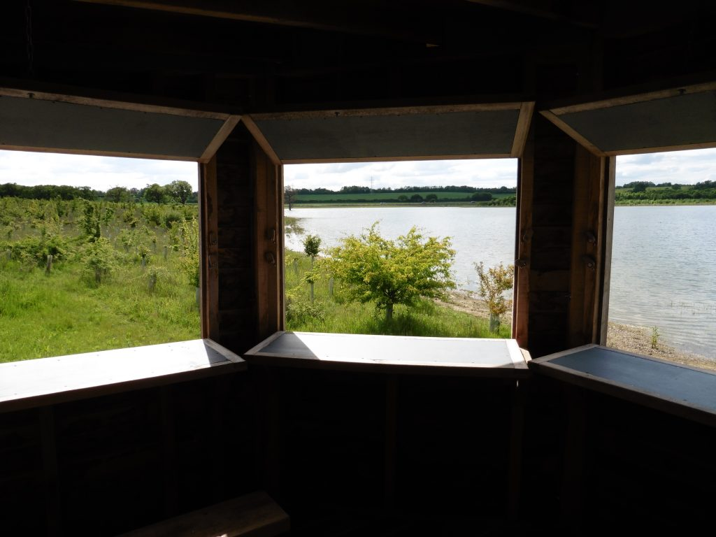 Window view hide bay bird hide with sedum roof at abberton reservoir for essex wildlife trust