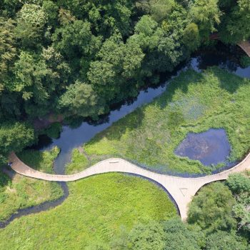 aerial kew wakehurst oak wetland boardwalk
