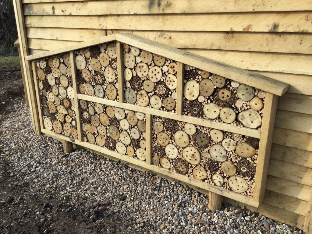 bee hotel at hexagonal bird hide at rspb pagham harbour