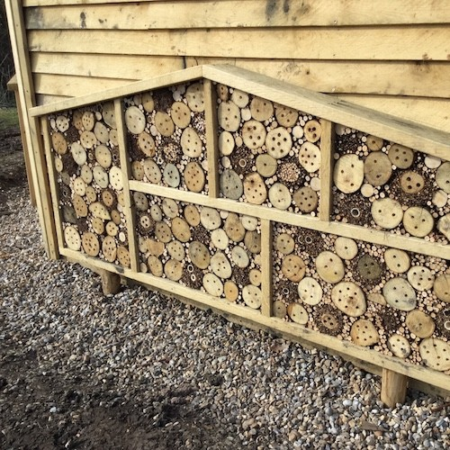 bee hotel at hexagonal bird hide at rspb pagham harbour square