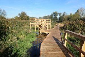 morden hall park 250m oak and larch boardwalk nature walk with viewing platforms national trust property
