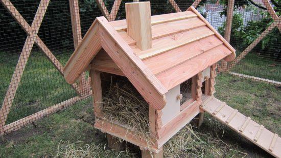 opening rabbit hutch pergola