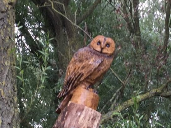 owl carving in tree landscape