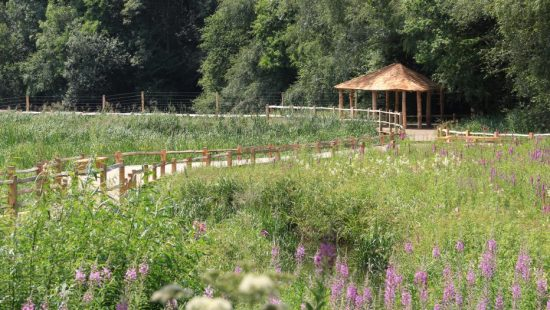 pergola kew wakehurst oak wetland boardwalk