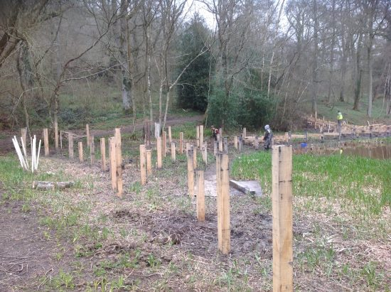 posts wakehurst kew boardwalk work in progress