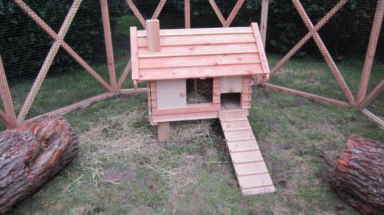 rabbit hutch pergola