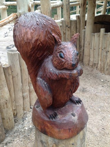 squirrel gortin glen forest park wooden sculptures and animal carvings