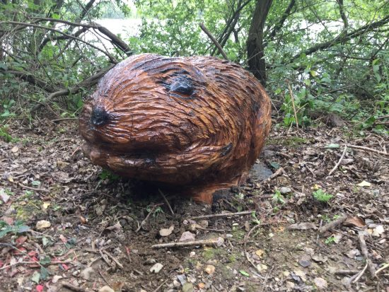 water vole face wooden sculpture rushden lakes
