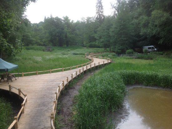 wetland boardwalk kew wakehurst wip
