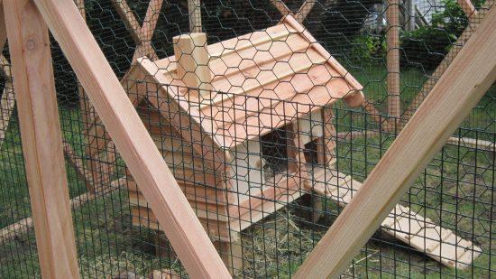 wire mesh rabbit hutch pergola